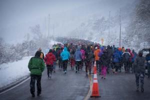 2016 Horsetooth Half Marathon Start